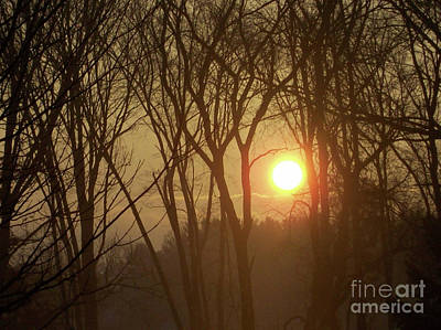 Rising Out Of The Fog-pure And Unadultrated Digital Photograph Poster by Mary Ann Weger