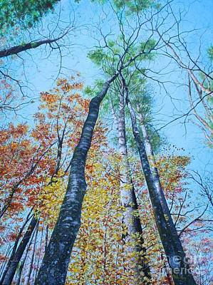 Up Into The Trees Poster by Mike Ivey