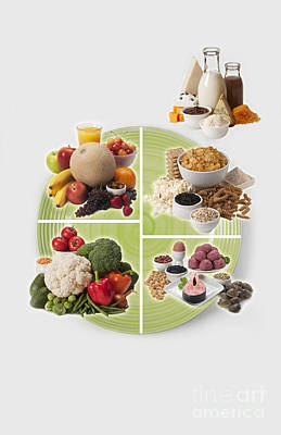 Usda Myplate Poster by George Mattei