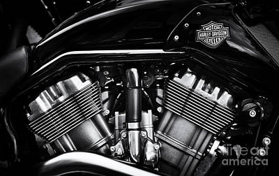 V Rod Muscle Poster by Tim Gainey