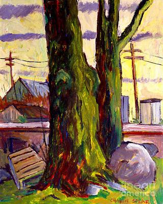Van Goghs Tree Plein Air Poster by Charlie Spear