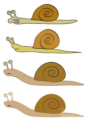 Various Snails Poster by Michal Boubin