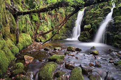 Vennford Waterfall On Dartmoor In Spring Poster by Pete Hemington