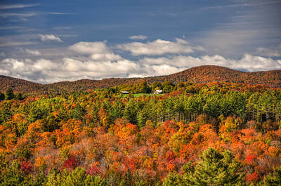 Vermont Fall Foliage  Poster by Joann Vitali