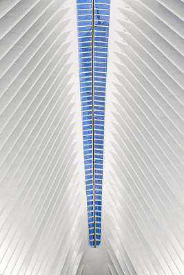 View To World Trade Center Wtc  Poster by Susan Candelario