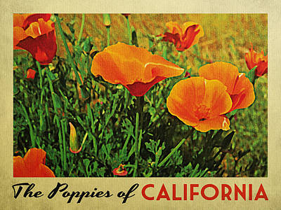 Vintage California Poppies Poster by Flo Karp