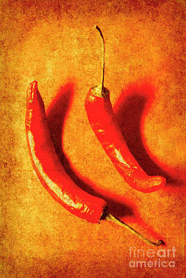 Vintage Hot Curry Peppers Poster by Jorgo Photography - Wall Art Gallery