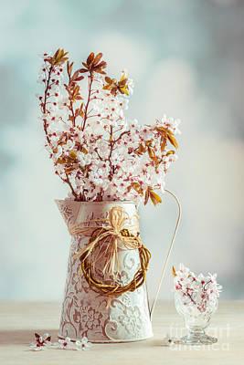 Vintage Spring Blossom Poster by Amanda Elwell