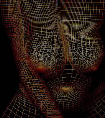Voluptuous In Wireframe Poster by James Barnes