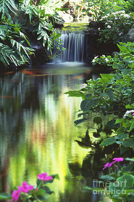 Waimea Falls Park Poster by Bill Brennan - Printscapes