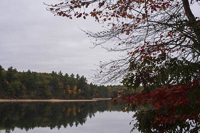 Walden Pond Fall Foliage Le 2aves Concord Ma Poster by Toby McGuire