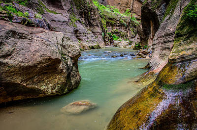 Wall Street Hiking Zion National Park Poster by Scott McGuire
