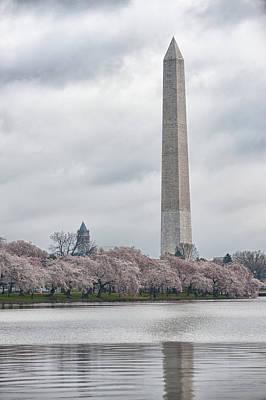 Washington Monument During Cherry Blossom Festival  Poster by Sebastian Musial