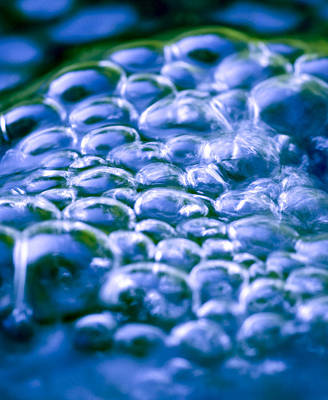 Water Bubbles Poster by Frank Tschakert