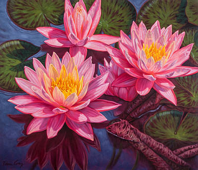 Water Lilies 3 - Sunfire Poster by Fiona Craig