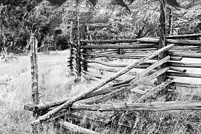 Weathered Fence Poster by Larry Ricker