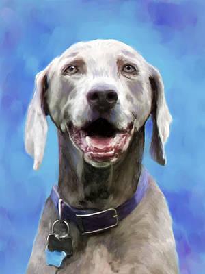 Weimaraner Dog Portrait Poster by Enzie Shahmiri