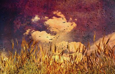Wheat Field Dream Poster by Bob Orsillo