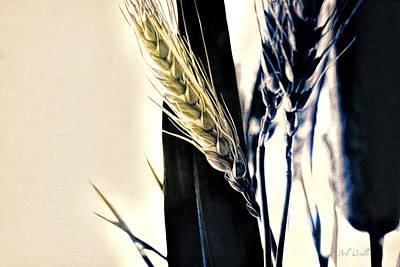 Wheat Still-life Poster by Bob Orsillo