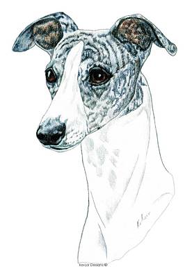 Whippet, Brindle Poster by Kathleen Sepulveda