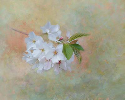Whispers Of Spring Poster by Kim Hojnacki