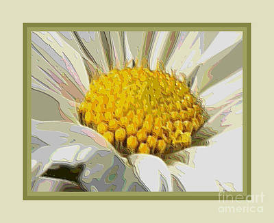White Flower Abstract With Border Poster by Carol Groenen