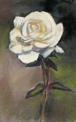 White Rose Of Love Poster by Billie Colson