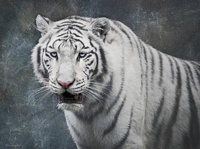 White Tiger Poster by Wim Lanclus