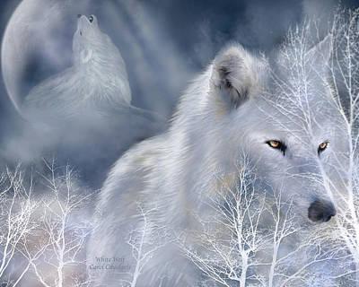 White Wolf Poster by Carol Cavalaris