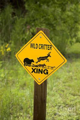 Wild Critter Crossing Sign Poster by Inga Spence