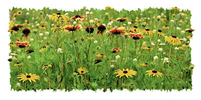 Wildflower Meadow Poster by JQ Licensing