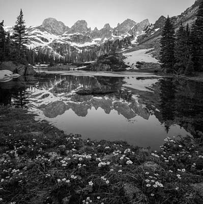 Willow Lake Black And White Poster by Aaron Spong