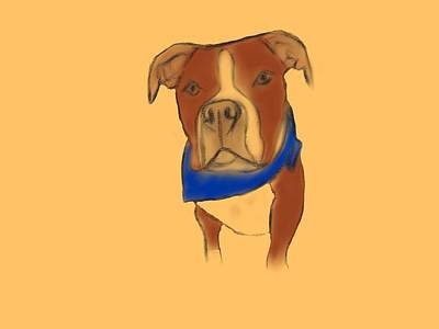 Willy The Pittie Poster by Sarah Dampier