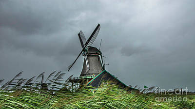 Windmill The Huisman  Poster by Adriana Zoon