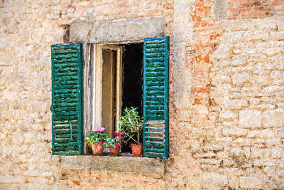 Window Flowers Of Tuscany Poster by David Letts