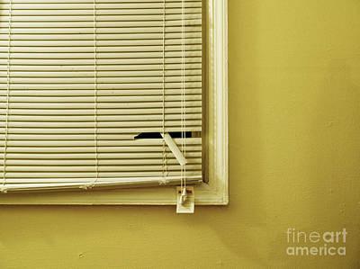 Window Mistreatment Poster by Valerie Morrison