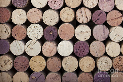 Wine Corks  Poster by Jane Rix