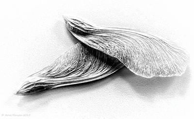 Wings II Poster by Arne Hansen