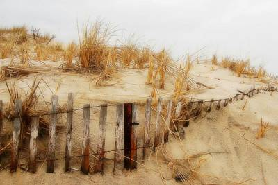 Winter Dune - Jersey Shore Poster by Angie Tirado