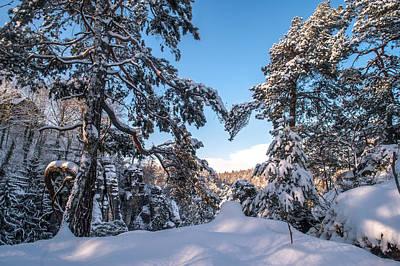Winter Heart. Saxon Switzerland Poster by Jenny Rainbow