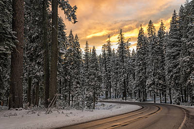 Winter Wonderland Poster by Loree Johnson