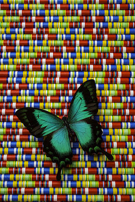Wonderful Green Butterfly Poster by Garry Gay