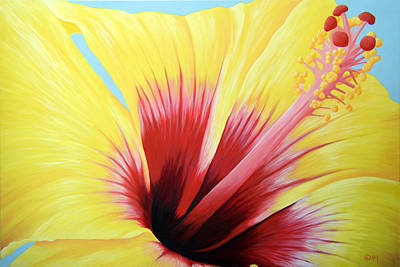 Yellow Hibiscus Poster by Adam Johnson