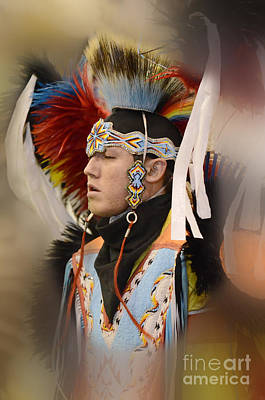 Pow Wow Young Man Poster by Bob Christopher