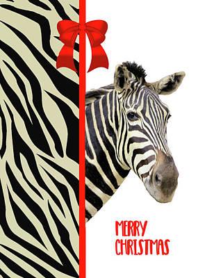 Zebra Christmas Card Poster by Rosalie Scanlon