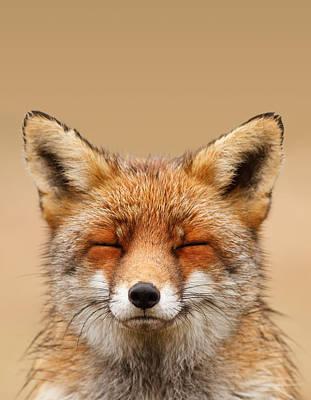 Zen Fox Series - Smiling Fox Portrait Poster by Roeselien Raimond