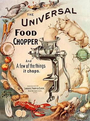 Vintage Drawing -  1899 1890s Usa Food Choppers Mincers by The Advertising Archives