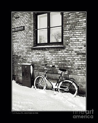Bicycle Under A Window Print by Pedro L Gili