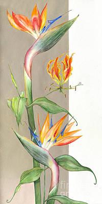 Strelitzia Drawing -  Bird Of Paradise 09 Elena Yakubovich by Elena Yakubovich