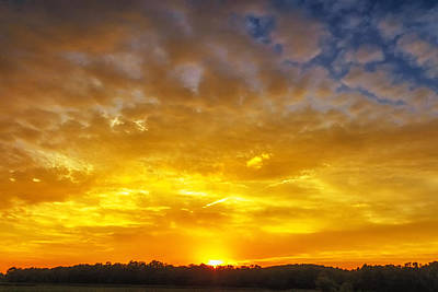 Great Meadows Sunset Of Gold Original by Sylvia J Zarco